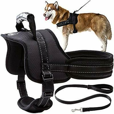 dog harness with leash handle no pull