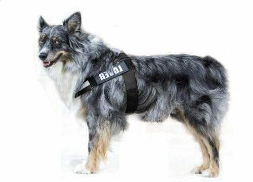 No Harness Adjustable with Vest for Dogs