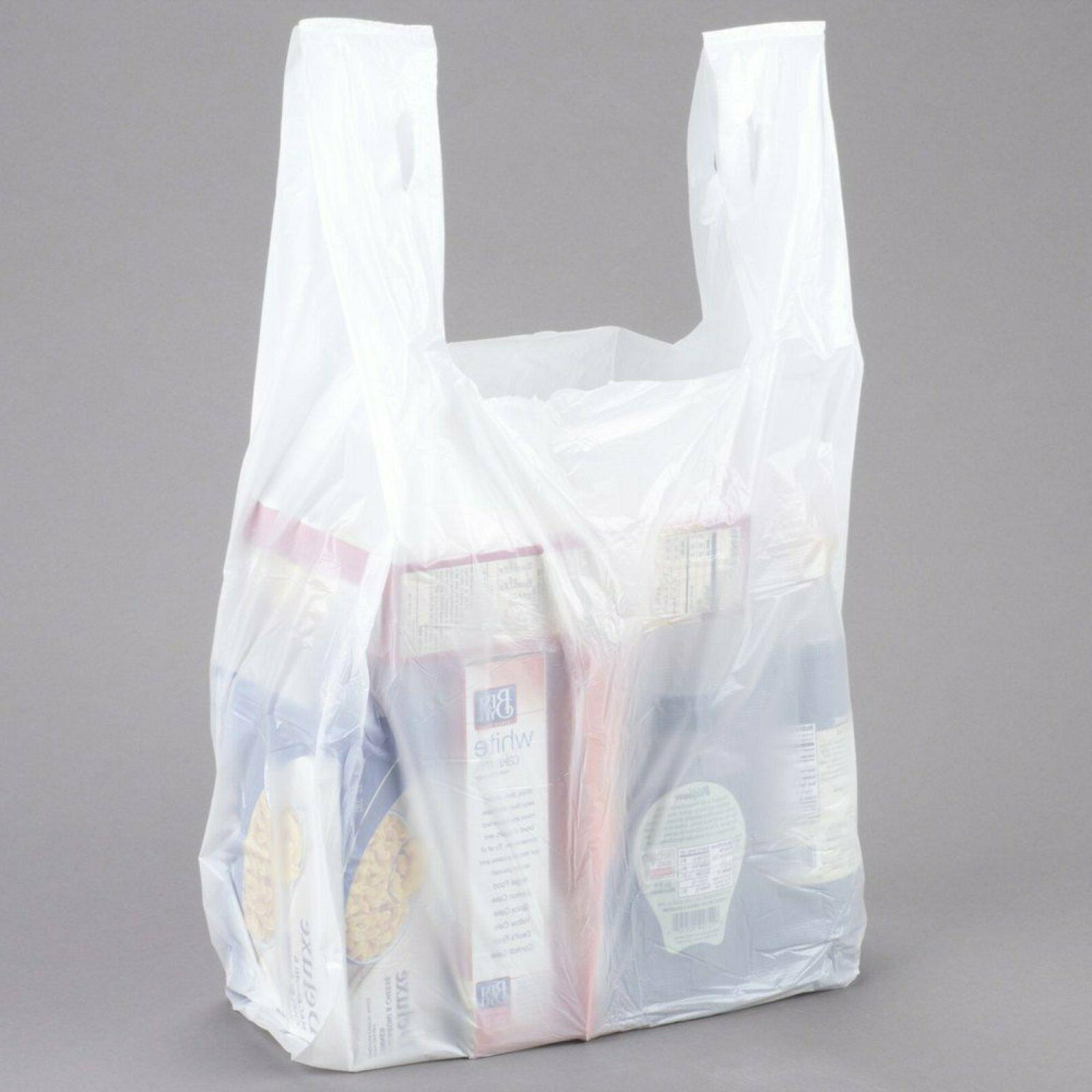 Large Carry-out Bag Plain White 12 X