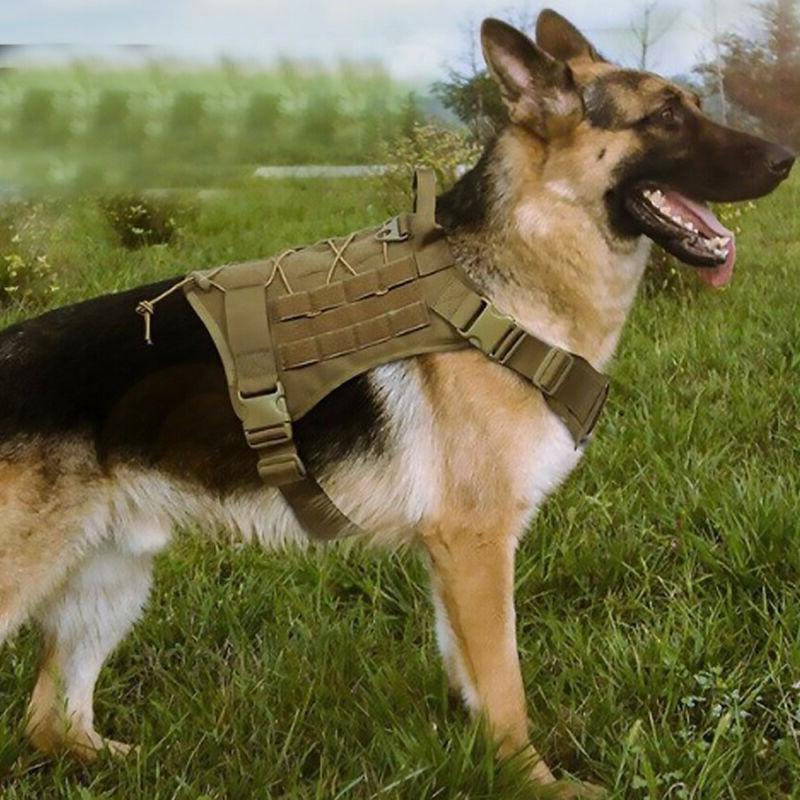 Tactical Dog with Handle No-pull Dog US Dog