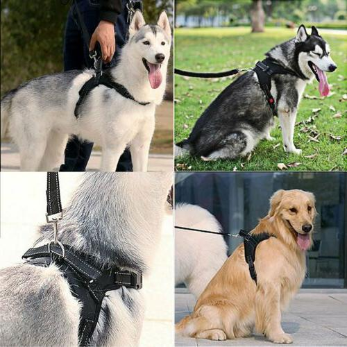 No Pull Small Dog Chest Strap with Handle