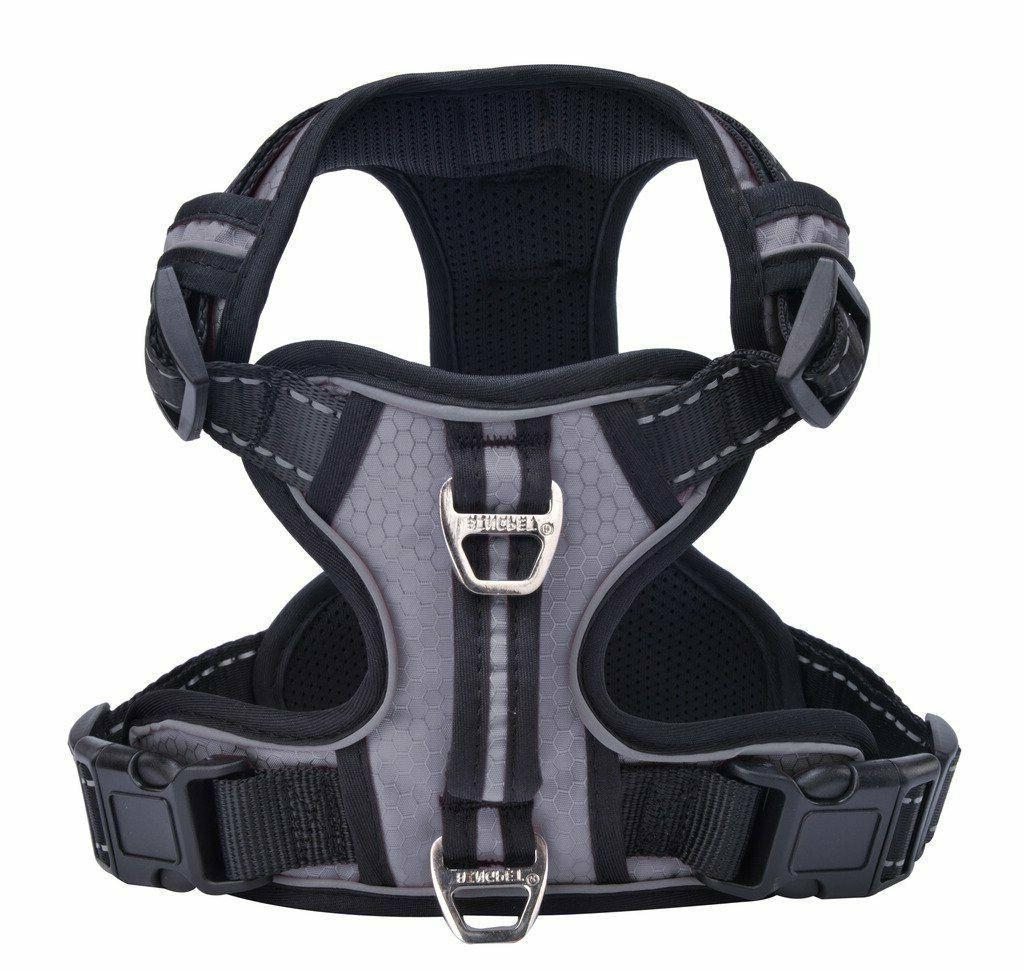 Harness with Vertical -