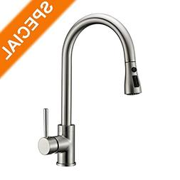 Kitchen Sink Faucet Brushed Nickel Delle Rosa Pause Function